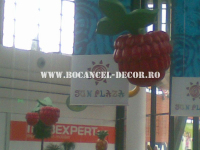 fructe_13